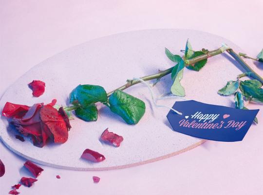 Valentijnscampagne sensibiliseert rond seksueel geweld